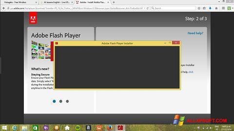 截图 Adobe Flash Player Windows XP
