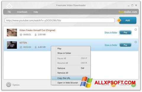 截图 Freemake Video Downloader Windows XP